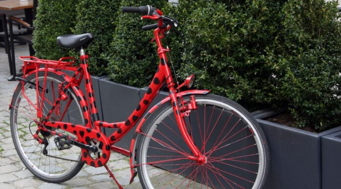 Tak nádherně může vypadat vaše kolo. Musíte se ale trochu snažit.